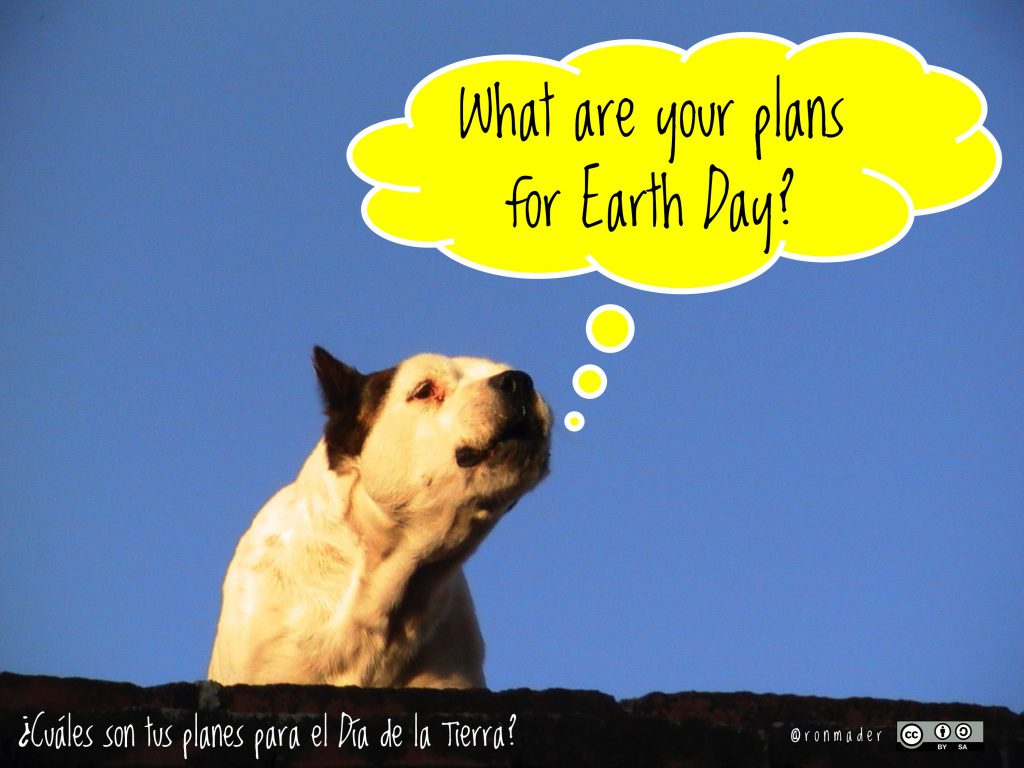 What are your plans for Earth Day?