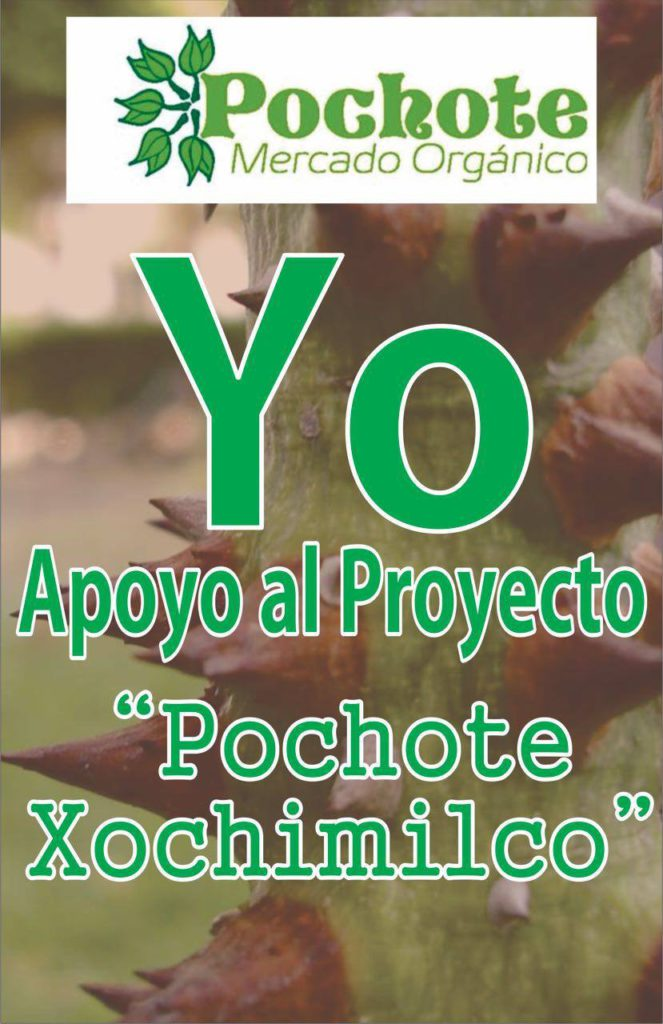 Yo Apoyo Pochote Xochimilco