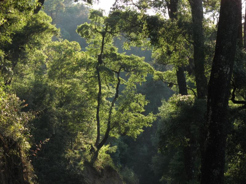 Exploring El Chico National Park (Parque Nacional El Chico)
