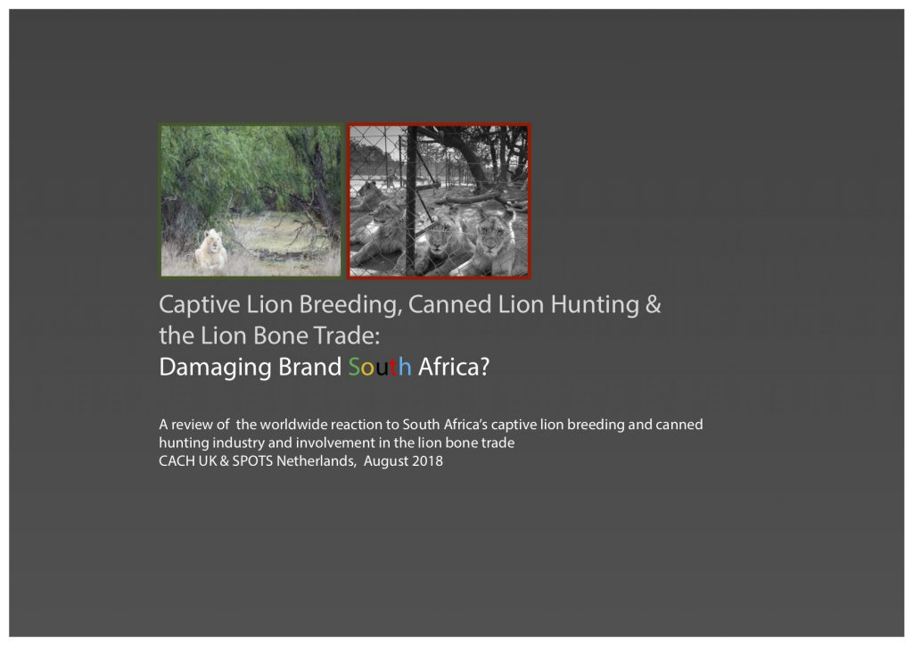 Captive Lion Breeding and Canned Lion Hunting: Damaging Brand South Africa?